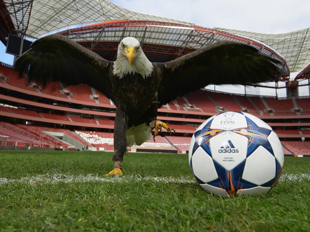 Benfica recusou empréstimo da Águia Vitória ao AEK Atenas