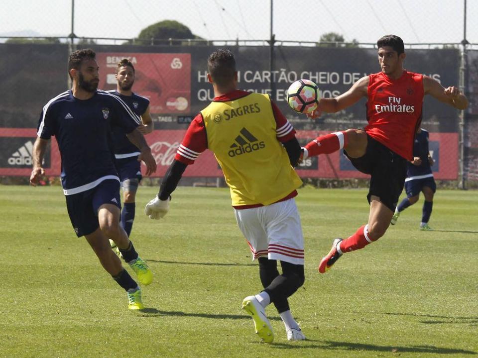 Benfica: primeiro treino para Zivkovic e com Júlio César