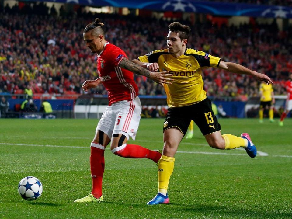 Benfica: Fejsa ainda ausente de lista com duas novidades