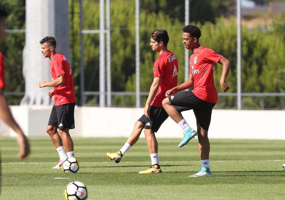 Benfica: Willock chamado aos sub-20 de Inglaterra