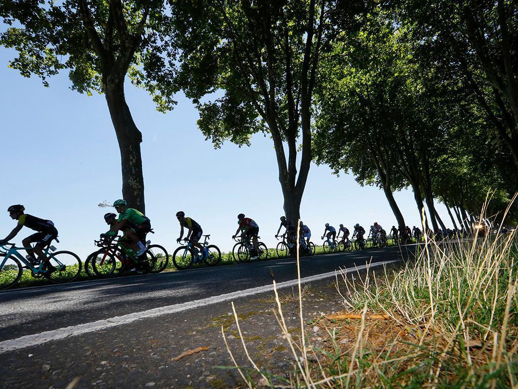 Ciclismo: Matteo Trentin vence «clássica» Paris-Tours ao sprint