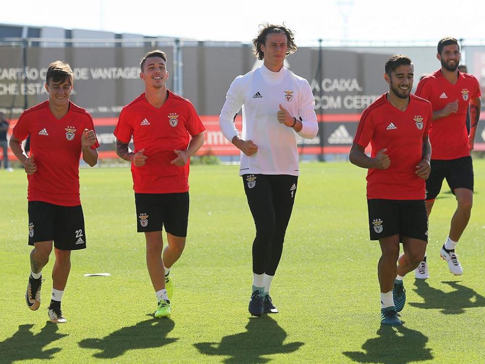 Benfica: preparação para o Basileia começou neste sábado