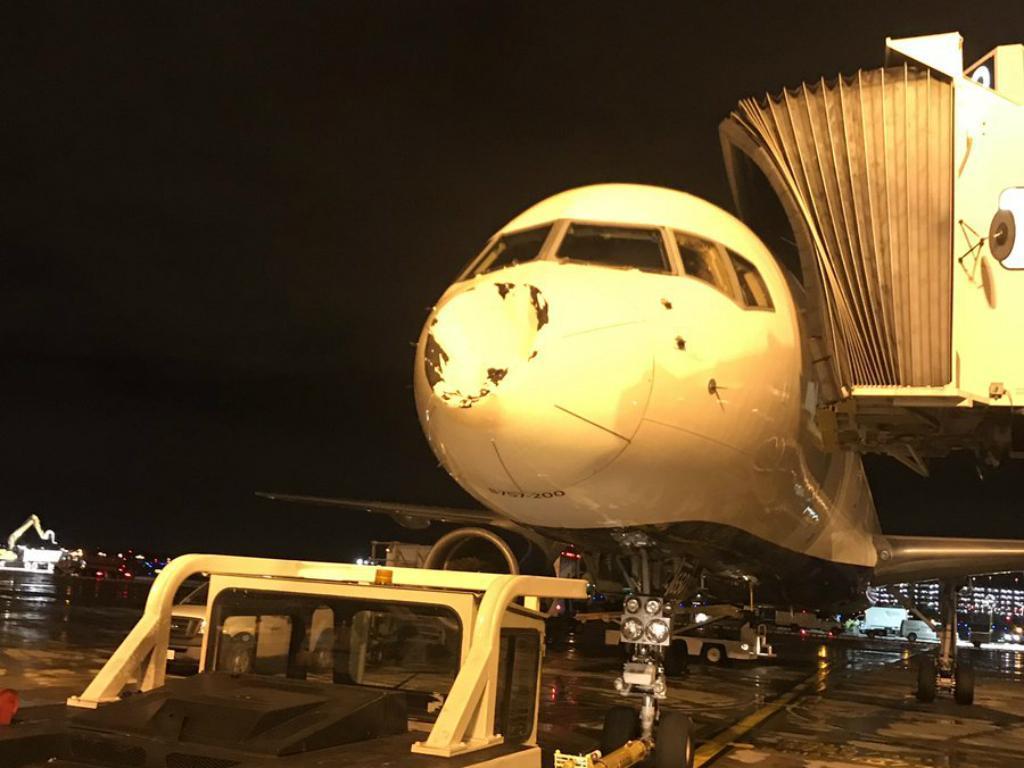 Avião de equipa da NBA danificado após colisão com um pássaro