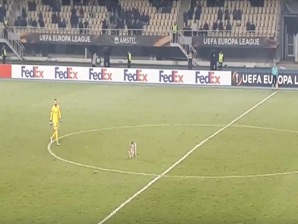 VÍDEO: cão invade jogo entre Vardar e Rosenborg