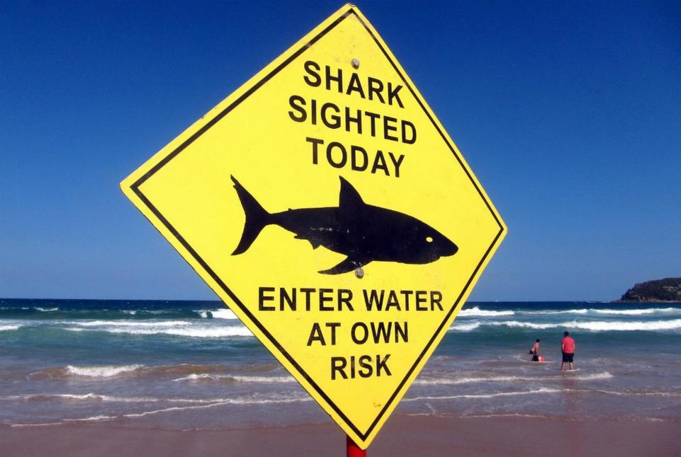 Surf: Margaret River Pro suspenso por causa de ataques de tubarões