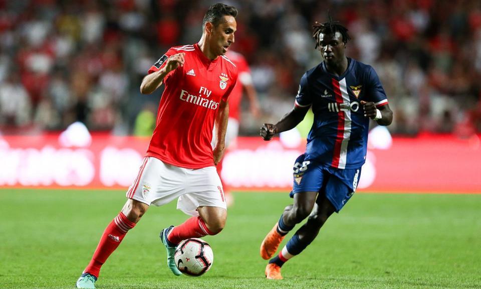 Benfica-Desp. Aves, 2-0 (destaques)